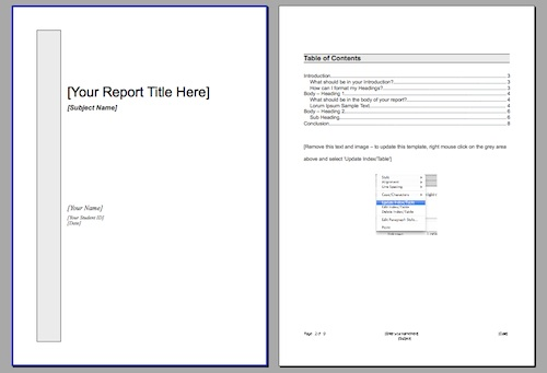 Good Report / Essay Template ...  Free Report Templates